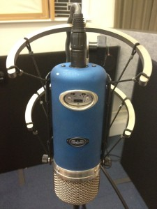 CAD VX2 Microphone in Shockmount